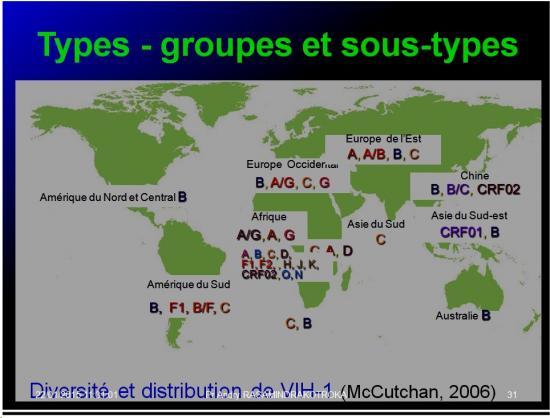 Retroviridae et infections par HTLV et VIH 11