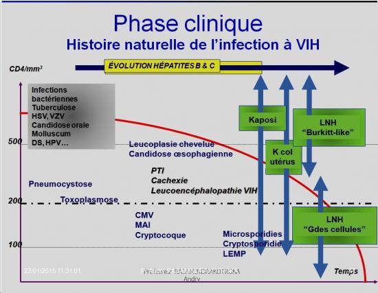 Retroviridae et infections par HTLV et VIH 14