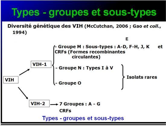 Retroviridae et infections par HTLV et VIH 8