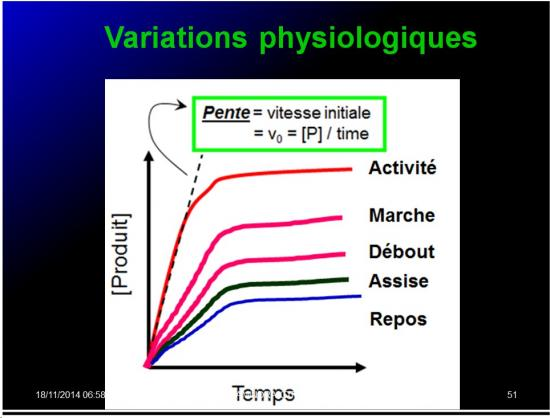 Variable - variabilité19