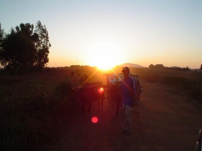 coucher-de-soleil-sva5o.jpg