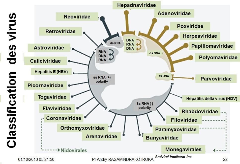 virus baltimore classification ile ilgili görsel sonucu